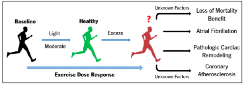 Figure 1. Controversies surrounding increased exercise dose from light/moderate to excess and possible pathologic outcomes associated with long-term exposures to strenuous levels of exercise (taken from Kim JH et al. Curr Atheroscler Rep. 2017)9