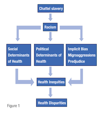 Diversity and Social Justice in Healthcare Fig 1