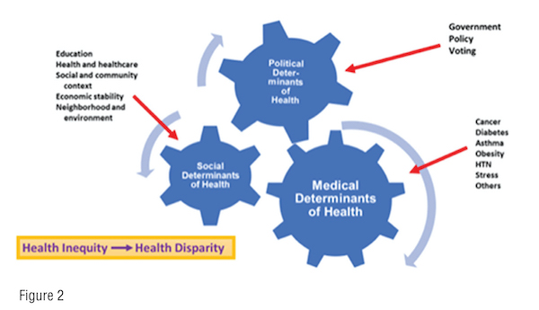 Diversity and Social Justice in Healthcare Fig 2